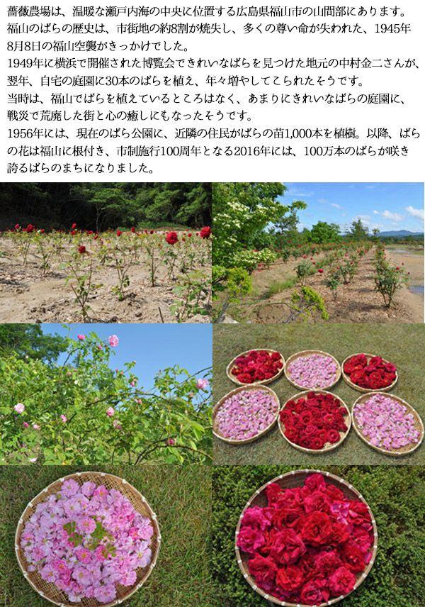 食用バラ農園